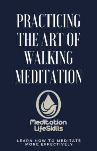 Mindfulness Walking Meditation PDF